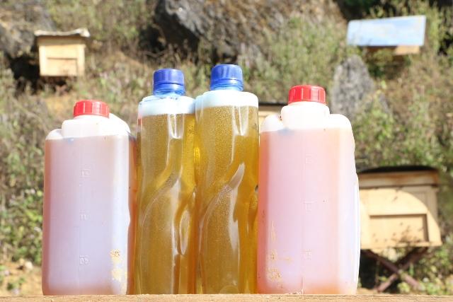 Mật ong bạc hà là sản phẩm được nhiều người tiêu dùng ưa chuộng