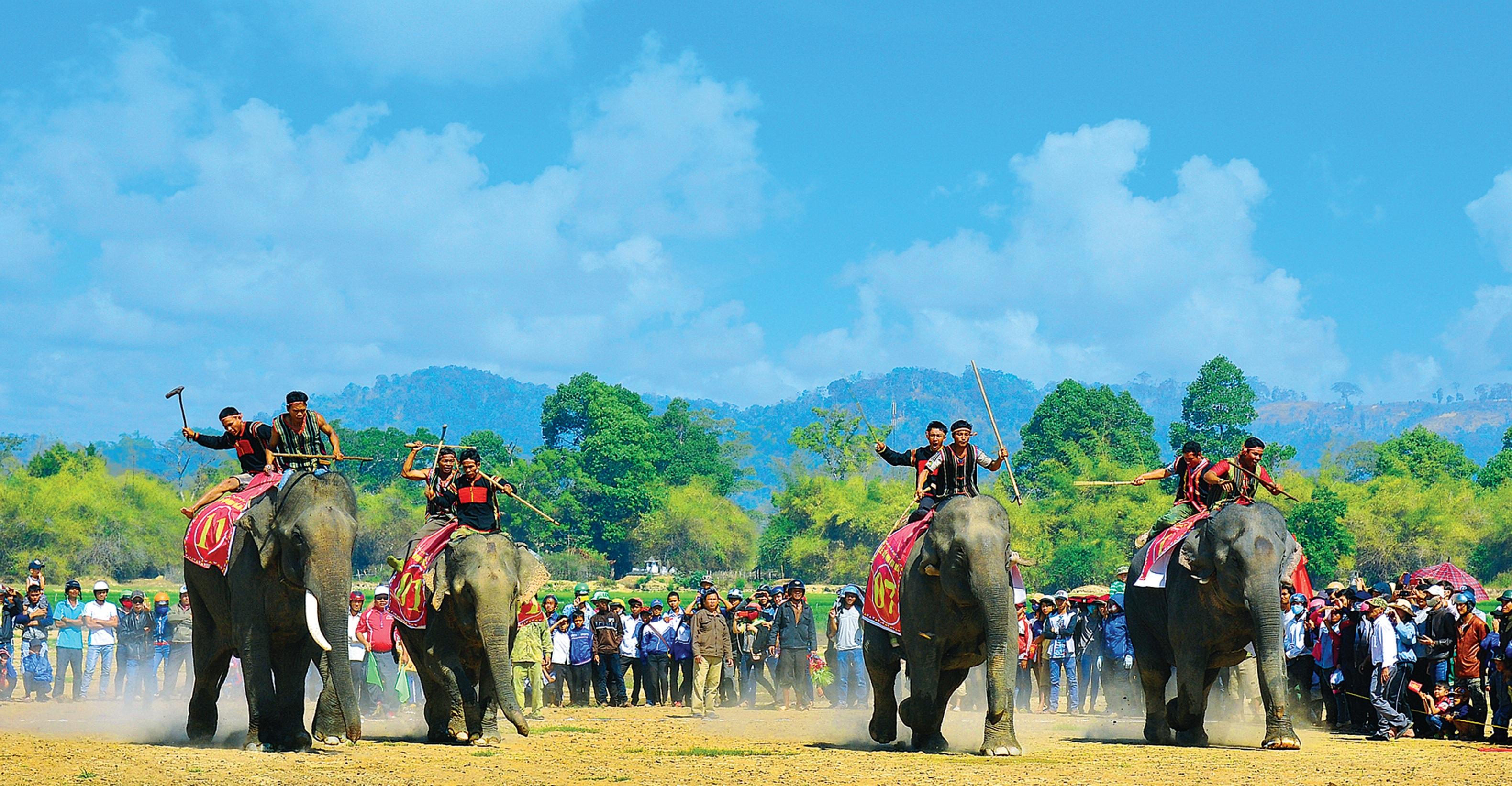 Lễ hội đua voi Tây Nguyên
